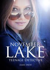 November Lake (Book 1): Teenage Detective