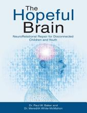 The Hopeful Brain: Neuro Relational Repair for Disconnected Children and Youth