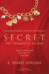 S.E.C.R.E.T: Det hemmelige selskab, Bind 1