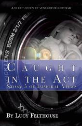 Caught in the Act: A short story of voyeuristic erotica