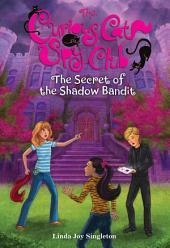 Secret of the Shadow Bandit