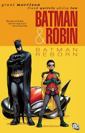 Batman and Robin Vol. 1: Batman Reborn