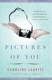 Pictures of You: A Novel