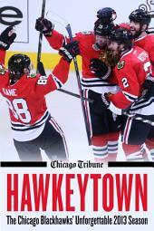 Hawkeytown: The Chicago Blackhawks' Unforgettable 2013 Season