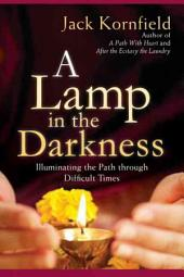 A Lamp in the Darkness: Illuminating the Path Through Difficult Times