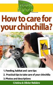 How to care for your chinchilla?: Small digital guide to take care of your pet
