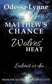 Matthew's Chance