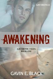 Awakening: Gay Erotic Tales #1: Gay Erotica