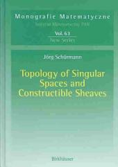 Topology of Singular Spaces and Constructible Sheaves