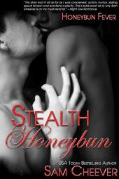 Stealth Honeybun (BWWM Romantic Suspense)