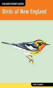 Falcon Pocket Guide: Birds of New England