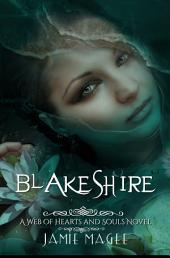 Blakeshire: Insight Series, Book Nine