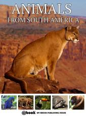 Animals from South America