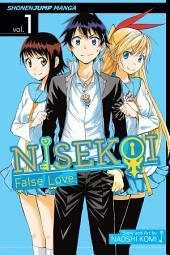 Nisekoi: False Love, Vol. 1: The Promise