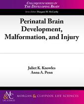 Perinatal Brain Development, Malformation, and Injury