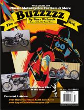 The Buzzzzz Rag: Volume 1 Issue 11