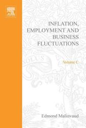 Inflation, Employment and Business Fluctuations: Volume 3