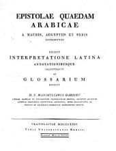 Epistolae quaedam Arabicae a Mauris, Aegyptiis et Syris conscriptae ... Annotationibusque illustravit et glossarum adjecit, C. Maximilianus Habicht