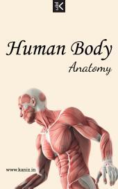 Human Body Anatomy