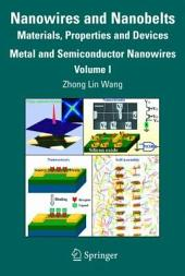 Nanowires and Nanobelts: Materials, Properties and Devices: Volume 1: Metal and Semiconductor Nanowires