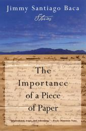 The Importance of a Piece of Paper: Stories