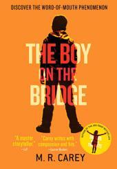 The Boy on the Bridge