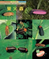 螢火蟲: 親親自然92