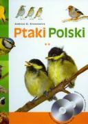 Ptaki Polski: Wróblowe - ptaki śpiewające