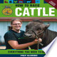 How to Raise Cattle: Everything You Need to Know, Updated & ...