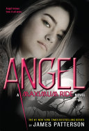 Find Angel at Google Books