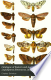 Catalogue of Eastern and Australian Lepidoptera Heterocera, ...