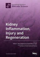 Find Kidney Inflammation, Injury and Regeneration at Google Books