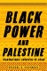 Is Palestine a country from books.google.com