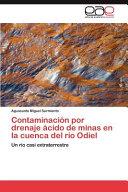 Contaminación por drenaje ácido de minas en la cuenca del río ...